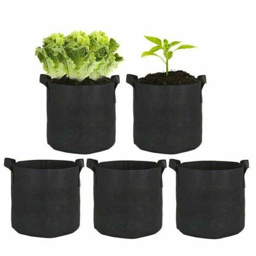 5 Fabric Pots Gallon