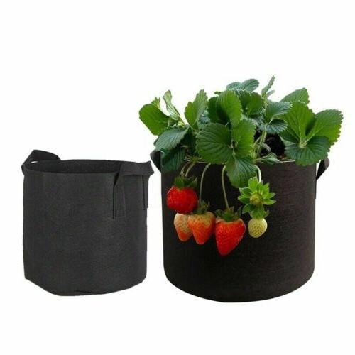 5 Pack Pots w/Handles Container